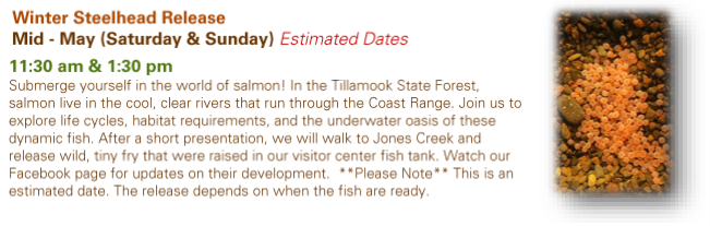 Tillamook Forest Center Winter Steelhead Release Mid May Saturday and Sunday Estimated Dates