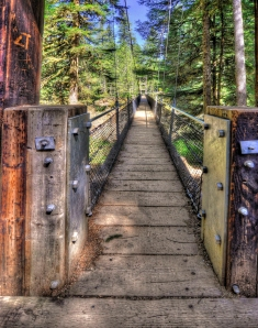 Drift Creek Suspension Bridge by John Williams