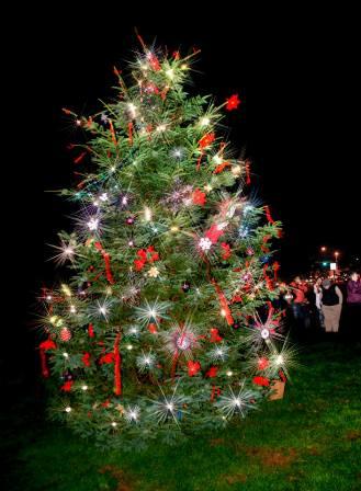 LCCC_tree