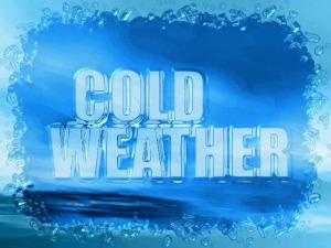 cold 60228C00-BGJHJ