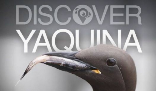 Discover Yaquina