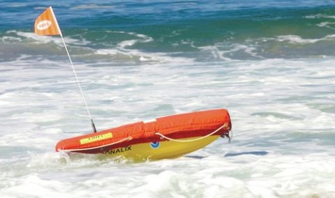 420494_web_EMILY-in-ocean
